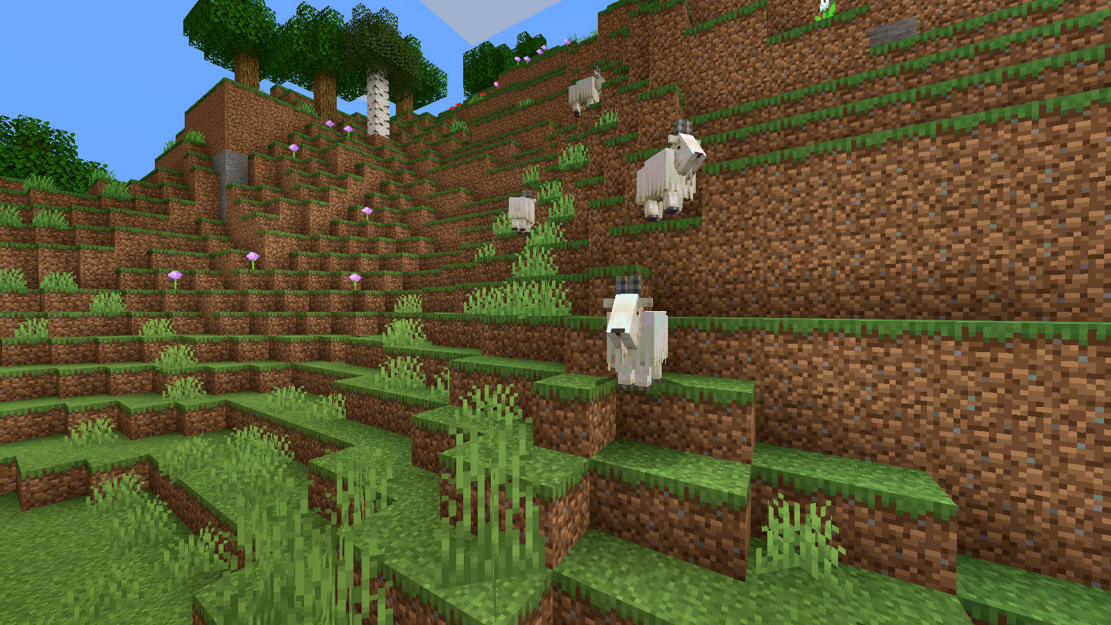 snapshot kozy